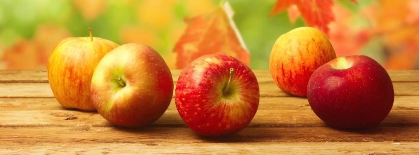 Őszi alma diéta
