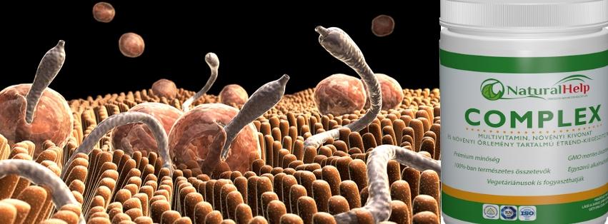 Bélféreg, paraziták  ellen béltisztítás