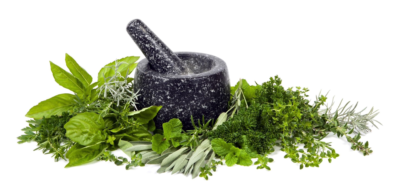 Naturalhelp Méregtelenítő gyógynövények
